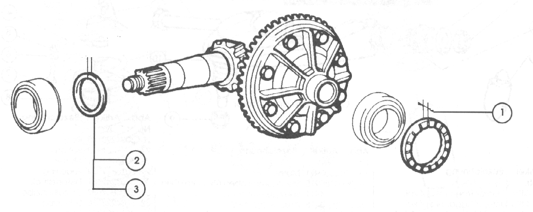 Differential – 1978-85